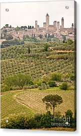 San Gimignano II Acrylic Print