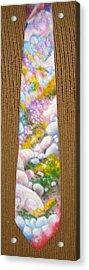 San Jacinto Spring Acrylic Print by David Kelly