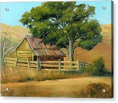 San Joaquin Barn Acrylic Print by Sally Seago