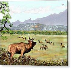 San Juan Elk Vista Acrylic Print