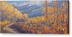 San Juan Mountain Gold Acrylic Print