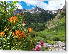 Acrylic Print featuring the photograph San Juans Indian Paintbrush Landscape by Cascade Colors
