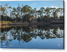 Acrylic Print featuring the photograph Sanctuary Reflection  by Julie Andel