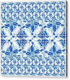 Sand Dollar Delight Pattern 6 Acrylic Print