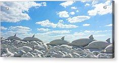 Sand Dolphins At Siesta Key Beach Acrylic Print