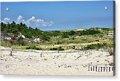 Acrylic Print featuring the photograph Sand Dune In Cape Henlopen State Park - Delaware by Brendan Reals