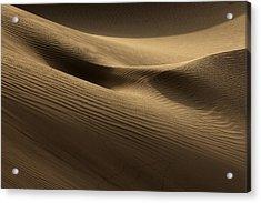 Sand Dune Acrylic Print by Phil Crean