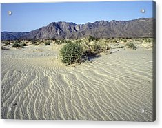Sand Dunes & San Ysidro Mountains At El Acrylic Print by Rich Reid