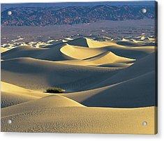 Sand Dunes Sunrise Acrylic Print