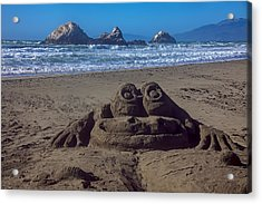 Sand Frog  Acrylic Print by Garry Gay