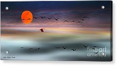 Sand Hill Cranes At Moonrise Acrylic Print
