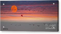 Sand Hill Cranes At Sunset/moonrise Acrylic Print