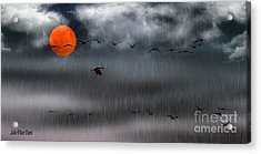 Sand Hills Flying In The Rain Acrylic Print