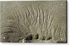 Sand Patterns On The Beach  1 Acrylic Print