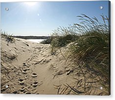 Sand Tracks Acrylic Print by Tara Lynn