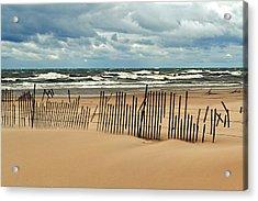 Sandblasted Acrylic Print by Michelle Calkins