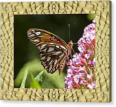 Acrylic Print featuring the photograph Sandflow Butterfly by Bell And Todd