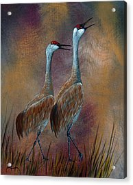 Sandhill Crane Duet Acrylic Print