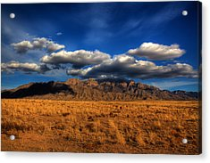 Sandia Crest In Late Afternoon Light Acrylic Print