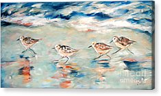 Sandpipers Running Acrylic Print