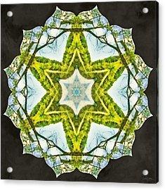 Acrylic Print featuring the photograph Sandstar by Derek Gedney