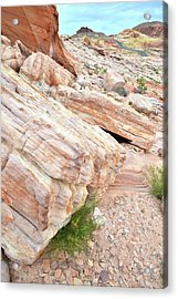 Acrylic Print featuring the photograph Sandstone Along Park Road In Valley Of Fire by Ray Mathis