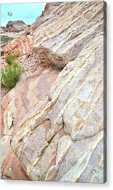 Acrylic Print featuring the photograph Sandstone Cove In Valley Of Fire by Ray Mathis