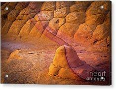 Sandstone Snail Acrylic Print by Inge Johnsson