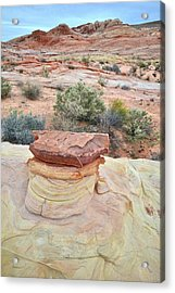 Acrylic Print featuring the photograph Sandstone Toadstool In Valley Of Fire by Ray Mathis