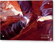 Sandstone Unfurled Acrylic Print