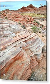 Acrylic Print featuring the photograph Sandstone Wash In Valley Of Fire by Ray Mathis
