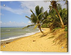 Sandy Beach II Acrylic Print