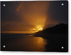 Sandy Leaving Montauk Acrylic Print by Kelly Nickels