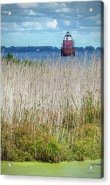 Sandy Pt Shoal Lighthouse With Marsh Grass Acrylic Print