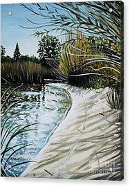 Sandy Reeds Acrylic Print