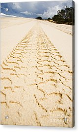 Sandy Tracks Acrylic Print by Jorgo Photography - Wall Art Gallery