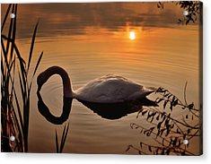 Sandy Water Park 6 Acrylic Print
