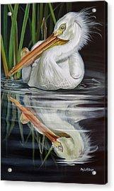 Sandy's Pelican Acrylic Print