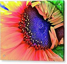 Sangria Acrylic Print