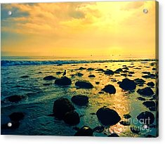 Santa Barbara California Ocean Sunset Acrylic Print