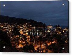 Santa Catalina Island Nightscape Acrylic Print by Angela A Stanton
