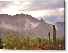 Santa Catalina Mountains II Acrylic Print