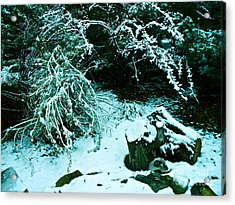Santa Fe Snow Acrylic Print by Chuck Taylor