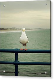 Acrylic Print featuring the photograph Santa Monica by Lucian Capellaro