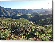 Santa Monica Mountains - Hills And Cactus Acrylic Print