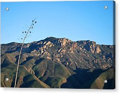 Acrylic Print featuring the photograph Santa Monica Mountains View  by Matt Harang
