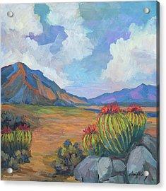Santa Rosa Mountains And Barrel Cactus Acrylic Print