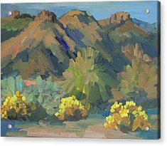 Acrylic Print featuring the painting Santa Rosa Mountains And Brittle Bush by Diane McClary