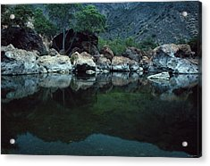 Santa Ynez River Acrylic Print by Soli Deo Gloria Wilderness And Wildlife Photography