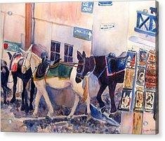 Santorini Donkeys Acrylic Print by Joyce Kanyuk